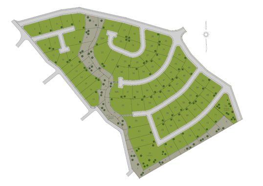 Vineyard Site Plan
